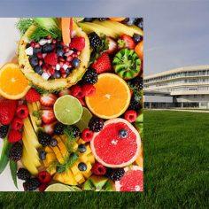 Διατροφή και το Καλοκαίρι γίνεται; cover image
