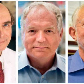 Νόμπελ 2020: Σε τρεις το Νόμπελ Ιατρικής – Ανακάλυψαν τον ιό της ηπατίτιδας C cover image