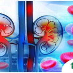 Επιτυχής μεταμόσχευση νεφρού σε 65χρονη ασθενή του ΙΑΣΩ Θεσσαλίας! cover image
